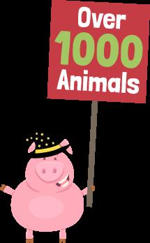 Over 1000 animals