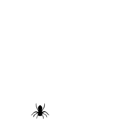 A spider hanging from a web