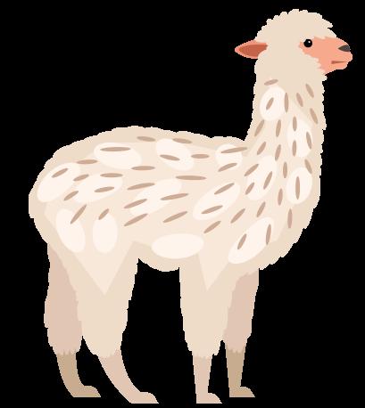 alpaca-large