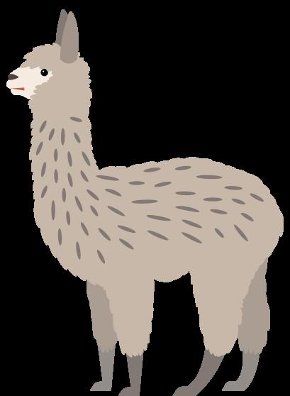 llama-large