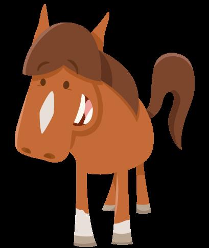 pony-large