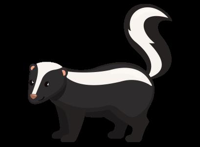 skunk-large