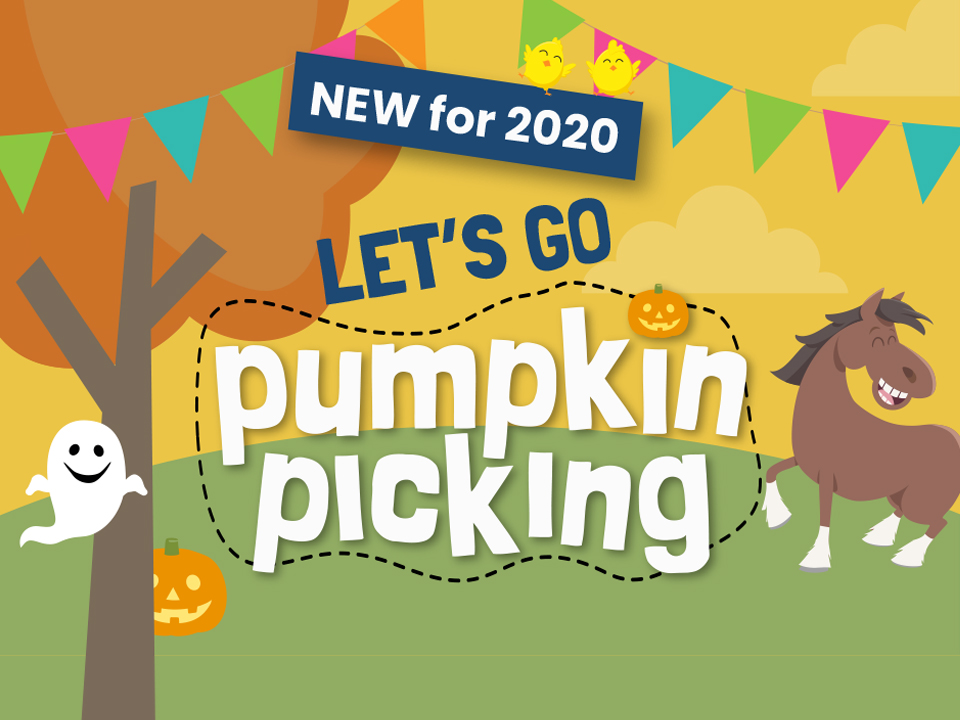 Pumpkin-Picking 2020