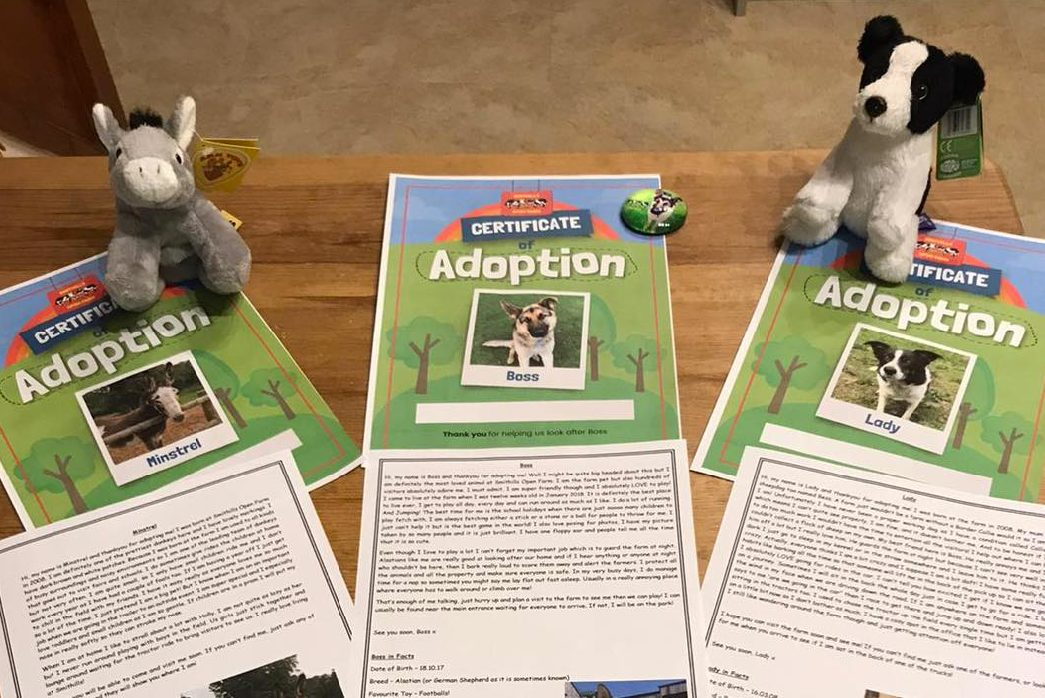 Adopt an animal for website-02