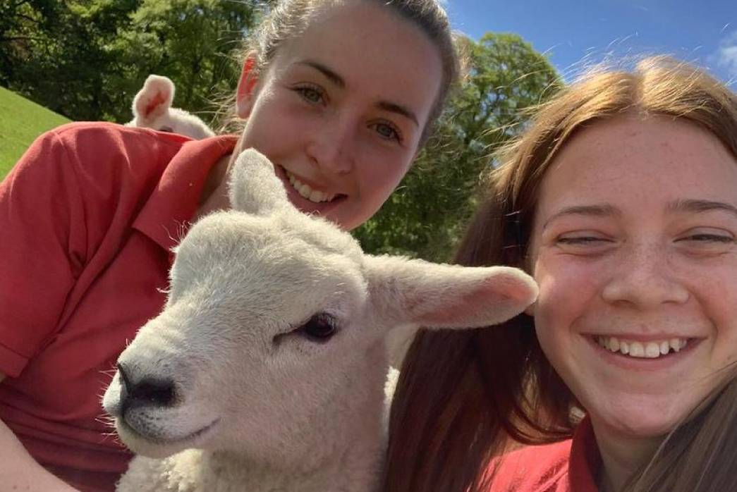 Smithills Open Farm July 2021_Team and Sheep